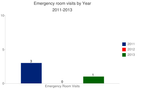 Emergency Room Visits by Year 2011-2013