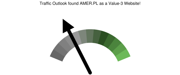 amer.pl analysis according to Traffic Outlook