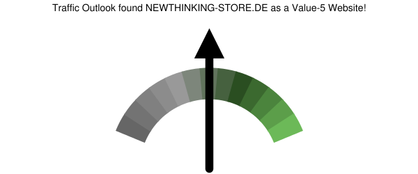 newthinking-store.de analysis according to Traffic Outlook