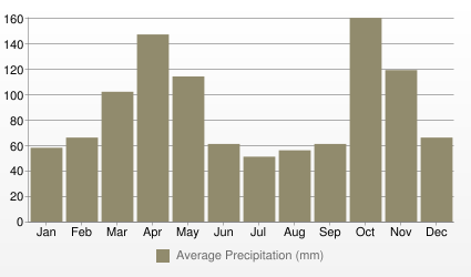 Bogotá Average Precipitation (mm)