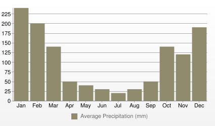 Sao Paulo Average Precipitation (mm)
