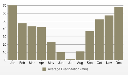 Tunis Average Precipitation (mm)
