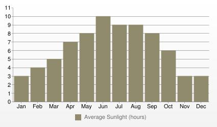 Detroit Average Sunlight (hours)