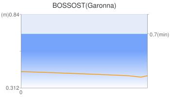 BOSSOST(Garonna)