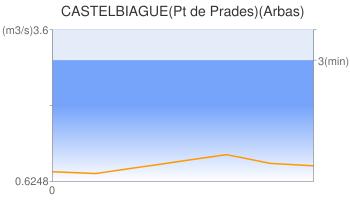 CASTELBIAGUE(Pt de Prades)(Arbas)