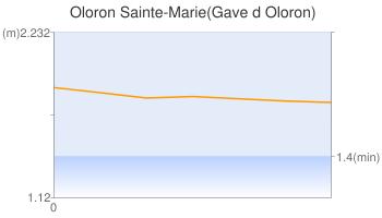 Oloron Sainte-Marie(Gave d Oloron)
