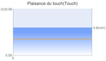 Plaisance du touch(Touch)