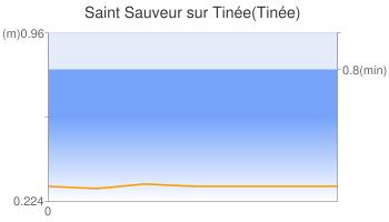 Saint Sauveur sur Tinée(Tinée)