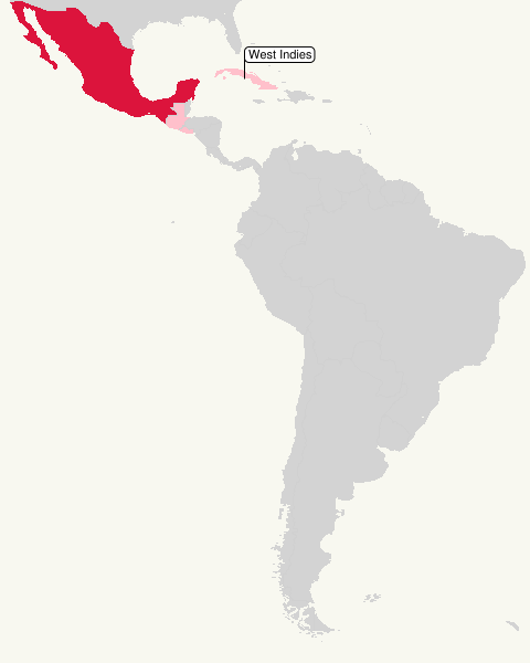 Map of Central and South America showing bird abundance