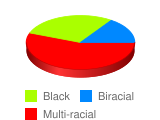 It is obvious that President Obama is mixed with different ethncities. What do you, yourself conside - Stats Chart