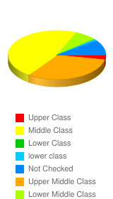 How would you classify your socioeconomic status?