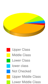 How would you classify your socioeconomic status?  - Stats Chart