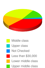 What is your social income? - Stats Chart