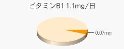 ビタミンB1 0.07mg(推奨量1.1mg/日)