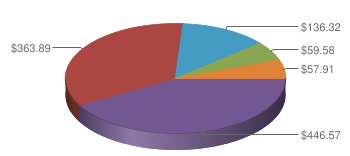 Pie Chart displaying Federal Spending FY 2009