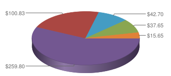Pie Chart displaying Extent of Competition