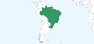 Pozycjonowanie w Brazylii