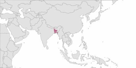 SMS sending Bangladesh