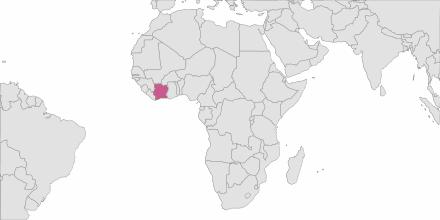 SMS sending Côte d'Ivoire (Ivory Coast)