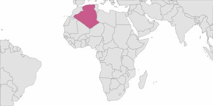 Envoi de SMS Algérie