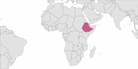 Envoi de SMS Ethiopie