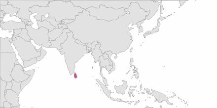 Envoi de SMS Sri Lanka