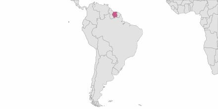 SMS sending Suriname