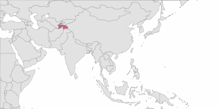 Envoi de SMS Tadjikistan