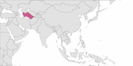 SMS sending Turkmenistan