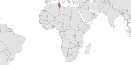 Envoi de SMS Tunisie