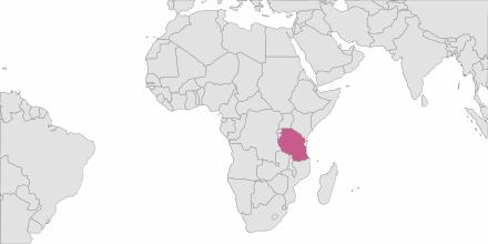 Envoi de SMS Tanzanie