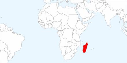 lemur habitat