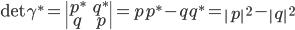 {\rm det}\; \gamma^* = \begin{vmatrix} p^* & q^* \ q & p \end{vmatrix} = pp^* - qq^* = \left|p\right|^2 - \left|q\right|^2