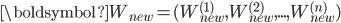 \boldsymbol{W}_{new}=(W_{new}^{(1)},W_{new}^{(2)},...,W_{new}^{(n)})