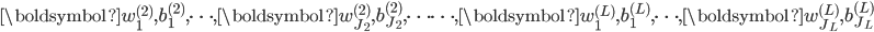 \boldsymbol{w}^{(2)}_1, b^{(2)}_1, \cdots , \boldsymbol{w}^{(2)}_{J_2}, b^{(2)}_{J_2}, \cdots \cdots , \boldsymbol{w}^{(L)}_1, b^{(L)}_1, \cdots, \boldsymbol{w}^{(L)}_{J_L}, b^{(L)}_{J_L}