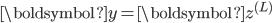 \boldsymbol{y} = \boldsymbol{z}^{(L)}