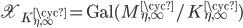 \mathfrak{X}_{K_{\eta, \infty}^{\cyc}} = {\rm Gal}(M_{\eta, \infty}^{\cyc}/K_{\eta, \infty}^{\cyc})