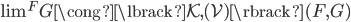\textstyle\lim ^ F G \cong \lbrack \mathcal{K},(\mathcal{V}) \rbrack ( F, G )