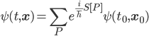 {\displaystyle \psi(t,\mathbf{x}) = \sum_Pe^{\frac{i}{\hbar}S[P]}\psi(t_0,\mathbf{x}_0) }