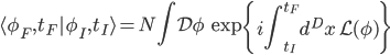 {\displaystyle \langle\phi_F,t_F|\phi_I,t_I\rangle = N\int\mathcal{D}\phi\,\exp\left\{i\int_{t_I}^{t_F}d^Dx\,\mathcal{L}(\phi)\right\}}