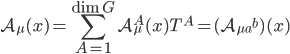{\displaystyle \mathcal{A}_{\mu}(x) = \sum_{A=1}^{\dim G}\mathcal{A}_{\mu}^A(x)T^A = (\mathcal{A}_{\mu a}{}^b)(x)}