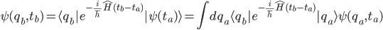 {\displaystyle \psi(q_b,t_b) = \langle q_b|e^{-\frac{i}{\hbar}\hat{H}(t_b - t_a)}|\psi(t_a)\rangle = \int dq_a\langle q_b|e^{-\frac{i}{\hbar}\hat{H}(t_b - t_a)}|q_a\rangle\psi(q_a,t_a)}