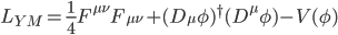L_{YM}=\frac{1}{4}F^{\mu \nu}F_{\mu \nu}+(D_{\mu}\phi)^{\dag} (D^{\mu}\phi)-V(\phi)