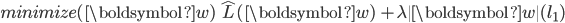 { \displaystyle minimize(\boldsymbol{w})  \,\, \,\, \hat{L}(\boldsymbol{w}) \,\, + \lambda \| \boldsymbol{w} \| (l_1) }