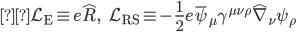 { \displaystyle\mathcal{L} _{\text{E}} \equiv e\hat{R}, \ \ \ \ \ \mathcal{L} _{\text{RS}} \equiv -\frac{1}{2} e \bar{\psi} _{\mu} \gamma ^{\mu \nu \rho} \hat{\nabla} _{\nu} \psi _{\rho} }