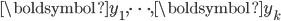 {\boldsymbol{y_1}, \dots, \boldsymbol{y_k} }