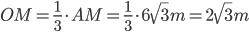 OM=\frac{1}{3}\cdot AM=\frac{1}{3}\cdot 6\sqrt{3} m=2\sqrt{3} m