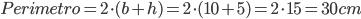 Perimetro=2\cdot(b+h)=2\cdot(10+5)=2\cdot15=30cm