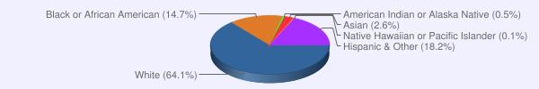 Race Stats