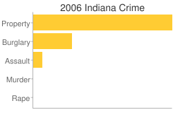 Indiana Criminal Activity Breakdown
